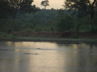 Kruger-Nationalpark_20